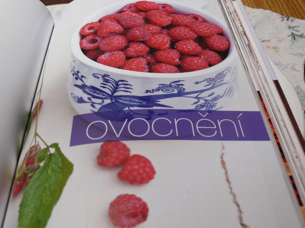 Jezte česky - rok v naší kuchyni - ovocnění