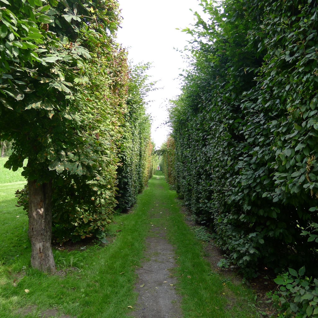 Zahrada Břevnovského kláštera