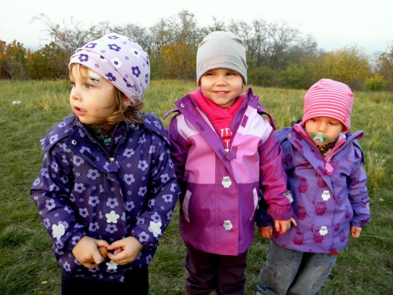 Fialky na podzim