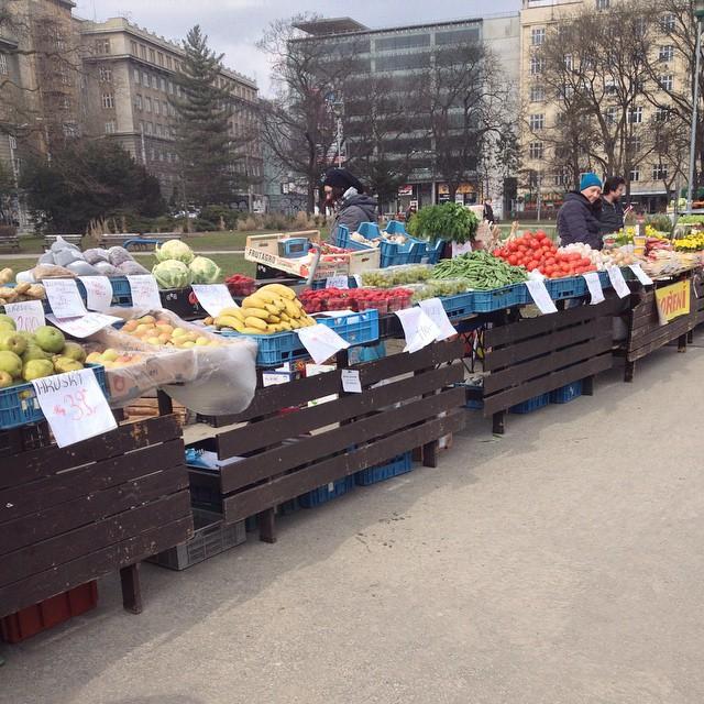 Zelný trh